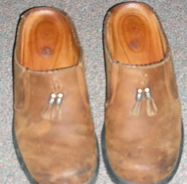 Shoesariat